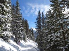 Beim Brunni ob Engelberg ist wieder schön winterlich. (Bild: Walter von Holzen, Brunni, 12. März 2019)