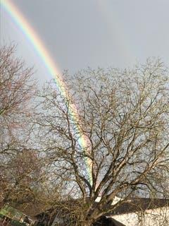 Regenbogen bei Märwil. (Bild: Milena Grubenmann)