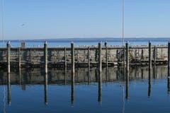 Der blaue See bei Rorschach.(Bild: Fredy Zünd)
