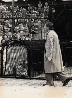 Emil bei einer Vorstellung im Jahr 1977 als Zuschauer, der sich in den Tigerkäfig verirrt. Der Luzerner Kabarettist prägte die damalige Tournee massgeblich mit. Nie besuchten mehr Leute die Vorstellungen des Circus Knie, über 1,2 Millionen waren bei den 389 Vorführungen an 60 Orten dabei. (Bild: PD/Archiv Circus Knie)
