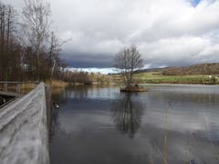 Wechselhaftes Wetter am Hüttwilersee. (Bild: Stephan Lendi)