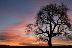 Wunderschöne Morgenröte. (Bild: Irene Wanner, Gettnau, 17. März 2019)