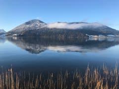 Ein perfekter Tag bahnt sich an. Die letzten Nebelschwaden wehren sich noch. (Bild: Enrico Schildknecht, Ländli Oberägeri, 19. März 2019)