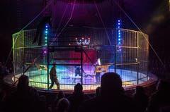 Requisiteure bauen den Käfig für die Löwen in der Manege auf. (Bild: Andrea Stalder)