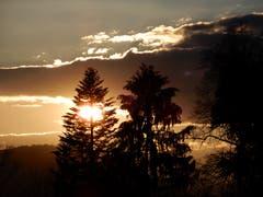 So eine Sonnenuntergangs-Stimmung auf der Wanderung von Meggen nach Luzern zu geniessen ist immer wieder wunderschön. (Bild: Margrith Imhof-Röthlin, Luzern, 19. März 2019)