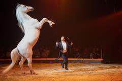 Ivan Frederic Knie während seinem Auftritt an der Premiere zur 100-Jahre-Jubiläumstournee des Circus Knie in Rapperswil (SG), am Donnerstag, 21. März 2019. (Bild: Keystone/Melanie Duchene)