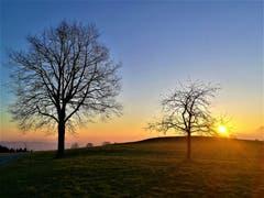 Wunderbarer Sonnenaufgang, aufgenommen in Ruswil. (Bild: Urs Gutfleisch, 22. März 2019)