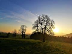 Wunderbarer Sonnenaufgang: Die ersten Sonnenstrahlen erreichen die Naturlandschaft. (Bild: Urs Gutfleisch, Malters, 24. März 2019)