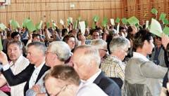 Jede Menge grüne Karten: Bei den Delegierten herrschte Einigkeit mit dem Vorstand. (Bild: Heidy Beyeler)