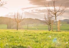 15 Minuten vor diesem Bild in Sirnach herrschte Weltuntergangsstimmung, anschliessend prachtvolles Frühlingswetter. (Bild: Nicolas Giovanettoni)