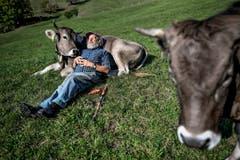 3. Preis Portrait: Armin Capaul, Initiant der Hornkuh-Initiative. (Bild: Fabrice Coffrini / AFP)