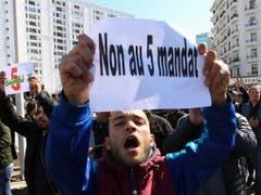 Trotz massiver Proteste will sich der algerische Präsident Bouteflika für eine fünfte Amtszeit bewerben. Seit eineinhalb Wochen protestieren immer wieder Tausende Menschen gegen seine erneute Kandidatur. (Bild vom 23. Februar) (Bild: KEYSTONE/AP/ANIS BELGHOUL)