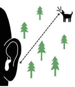 Peninkulma (Finnisch): Maximale Distanz, aus welcher man ein Hundegebell noch hören kann. Bei penetranten Kläffern sind das Kilometer.