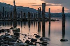 Sonnenuntergang am Seeufer bei Altenrhein. (Bild: Remo Schläpfer)