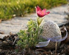 «Frohe Ostern» wünscht uns Leserin Irenne Wanner und schickt uns dieses Bild aus Schötz.