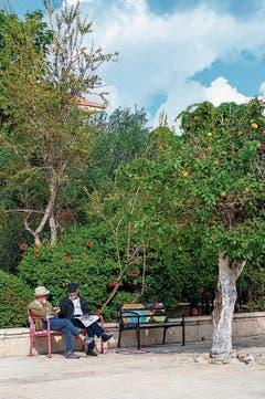Tel Aviv besticht mit schönen Pärken.
