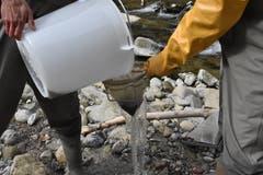 Die Wasserproben werden während der Feldarbeit mehrmals gesiebt.