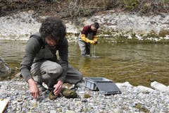 Roman Gerber und David Tanno (hinten) nehmen im Rotbach Proben von Kieselalgen und wirbellosen Tieren. Manche dieser Arten reagieren sensibel auf Wasserverschmutzung. (Bilder: Mea Mc Ghee)