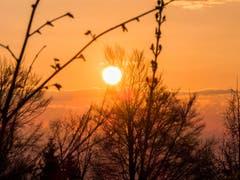 Sonnenuntergang auf der Schöfflisegg. (Bild: Julian Dudli)
