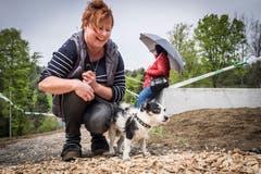 Rambo ist der erste Hund der die Brücke mit Frauchen Ute Kolb überquerte und die Hundegängigkeit mit Erfolg testete. (Bild: Hanspeter Schiess)