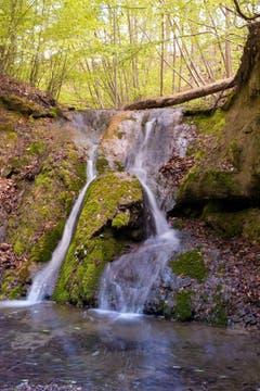 Kostbares Nass. Jetzt führen die Bäche wieder Wasser. (Bild: Priska Ziswiler-Heller, beim Sempachersee, 27. April 2019)