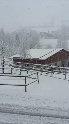 So sieht es am Donnerstagmorgen in Schwarzenberg (Luzern) aus. (Bild: facebook.com, Pia Feierabend)