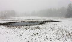 Frühlingsschnee im Andwiler Moos. (Bild: Walter Schmidt)