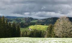 Winterliche Stimmung im Frühling auf der Hohen Buche. (Bild: Renate Wachsmuth)