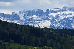 Etwas ungewöhnlich, fast unheimlich. Der Frühling im Wald und die noch winterliche Nordflanke des Alpsteins. (Bild: Walter Schmidt)