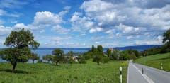 Ausblick über dem Schloss Wartensee in Rorschacherberg. (Bild: Klaus Businger)