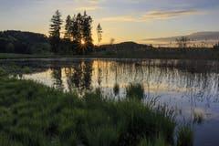 Ein romantischer Sonnenuntergang im Turpenriet. (Bild: Roland Hof)