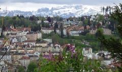Sicht über die Stadt St. Gallen zum Alpstein - von Flieder-Frühling zum Winter. (Bild: Doris Sieber)