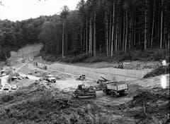 Bauarbeiten im Sitterwald vor dem späteren Westportal des Rosenbergtunnels.