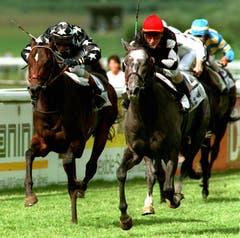Teilnehmer des 17. Bankverein Swiss Derby in Frauenfeld kämpfen auf der Rennbahn um den Sieg. (Bild: Keystone/Patrick Kraemer (15. Juni 1997))