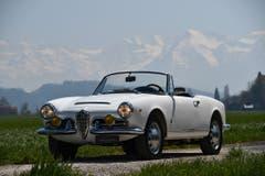 Alfa Romeo Giulia 1600 Spider 1963