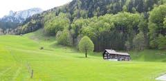 Appenzeller Bergland hinter Brülisau. (Bild: Klaus Businger)