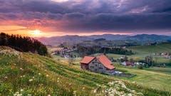Sonnenaufgang bei Lutzenland Herisau. (BIld: Luciano Pau)
