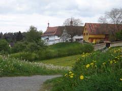 Es grünt so grün - Scheitlinsbüchel mit Sicht auf das Kloster Notkersegg. (Bild: Doris Sieber)
