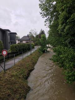 Auch dieser Bach in Weinfelden führt viel Wasser. (Bild. Raphael Rohner)