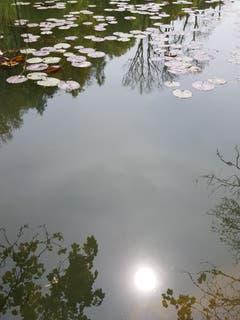 Die Sonne im Wasser. (Bild: Reto Schlegel)