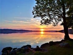 Wunderbar farbiger Sonnenuntergang beim Sempachersee. (Bild: Urs Gutfleisch, 26. Mai 2019)