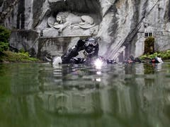 Am Samstag steigt sie wieder in den Teich beim Löwendenkmal: Tauchfotograifn Heidi Hostettler. (Bild: KEYSTONE/ALEXANDRA WEY)