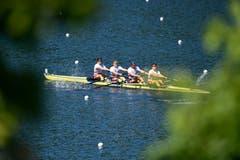 Augustin Maillefer, Paul Jacquot, Markus Kessler und Joel Schürch werden im Vierer-ohne starke Dritte. (Bild: Urs Lindt/Freshfocus, Luzern, 31. Mai 2019)