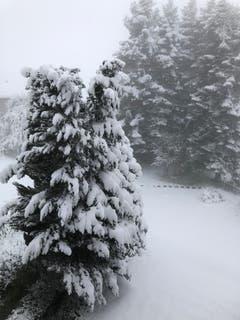 Schneeschaufeln statt Rasenmähen in St. Gallen-Oberhofstetten. (Bild: Nicola Zoller)
