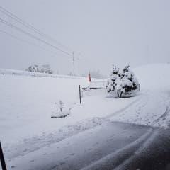 Schnee in Waldstatt: Geschaufelt und nicht-geschaufelt. (Bild: Jeannine Hengartner)