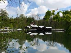 Frühling mit weisser Haube bei den Drei Weihern in St. Gallen. (Bild: Bruno Bischof)