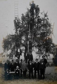 Obstbauverein Sursee und Umgebung 1922. (Bild: Archiv Franz Tschopp/ Gemeinde Mauensee)
