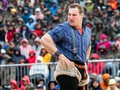 Joel Wicki sieht sich am Stoos-Schwinget nach Gegnern um: keine in Sicht! (Bild: KEYSTONE/ALEXANDRA WEY)