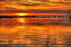 Der Sonnenuntergang bei der Rheinmündung ist fast wie flüssiges Gold. (Bild: Toni Sieber)