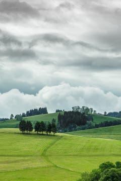 Nach dem Heuen und vor dem Regen. (Bild: Hans-Jörg Nüesch)